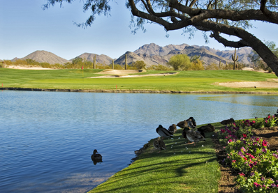 Golf course Scottsdale